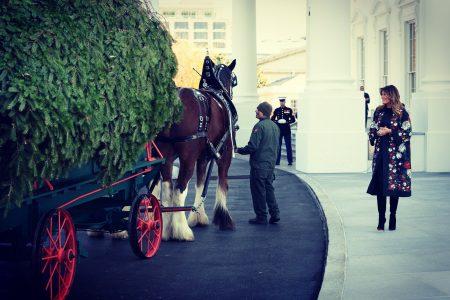 What Melania Wore Welcoming 2019 White House Christmas Tree